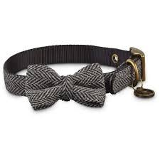 cat collars harnesses u0026 leashes petco
