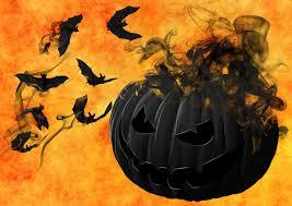 free stock photo of evil black halloween pumpkin with bats