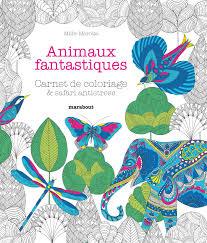 Amazonfr  Animaux fantastiques  Millie Marotta  Livres