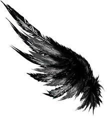 resultado de imagen de raven wings drawing tattoo ideas de