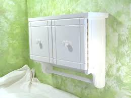 shallow wall cabinets with doors shallow wall mounted cabinet istanbulklimaservisleri club