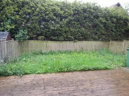 How To Cut Weeds In Backyard Clearing Overgrown Garden Of Weeds And Grass Gardening Forum