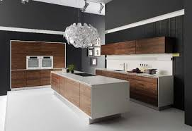 Buy Modern Kitchen Cabinets Affordable Modern Kitchen Cabinets Mafindhomes