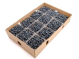 organic fruit delivery blueberries 12 pt organic fruit delivery fruitshare fruitshare