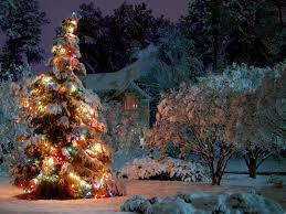 christmas tree lights hd wallpaper wallpapers at gethdpic com