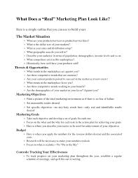 best 25 simple business plan template ideas on pinterest real