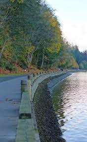 Zoo Lights Tacoma Wa by Best 25 Tacoma Washington Ideas On Pinterest Washington State