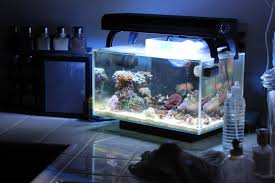 fluval edge marine light fluval edge light fixture light fixtures