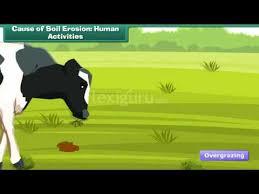 Human activities that cause floods   Your Homework Help  gerrijn com Geography AS Notes