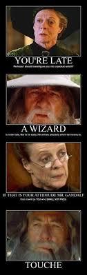 Professor Badass Meme - 21 professor mcgonagall memes only true potterheads will appreciate