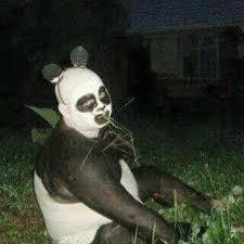 Sad Panda Meme - sad panda man blank template imgflip