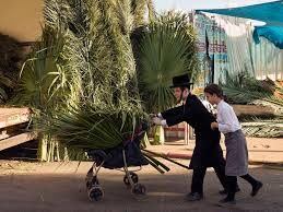 used sukkah for sale the history of sukkot once the most important of