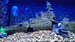 sunken battleship aquarium backdrop aquarium design aquarium