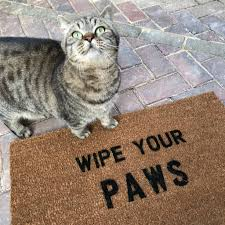 Coir Doormat Wipe Your Paws Wipe Your Paws U0027 Doormat By More Than Words Notonthehighstreet Com