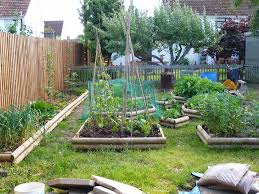 Vegetable Garden Netting Frame by An English Homestead May 2014