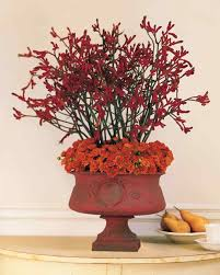 flower arrangements ideas floral arrangement ideas martha stewart