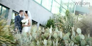 albuquerque photographers and asjha s albuquerque botanic garden wedding sweet william