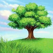 keywords blue sky trees shade trees turf grass plant vector
