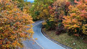 peak fall color appearing country visit