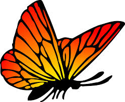 orange butterfly vector clipart image free stock photo