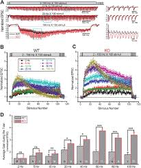 abnormal presynaptic short term plasticity and information