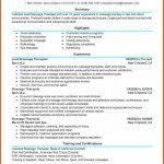 massage therapist resume example cv examples word
