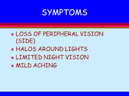 Halos Around Lights Allow Human Body To React To The Environment Ppt Download