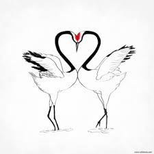 love birds tattoo drawing bird tattoos designs ideas and meaning