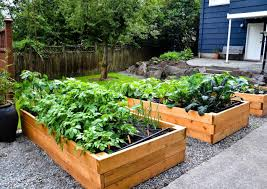 Diy Container Garden Kitchen Kitchen Garden Design Diy Container Planning And