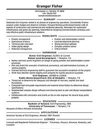 Examples For Resumes by Attractive Inspiration A Resume Example 11 Free Resume Samples