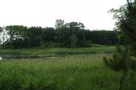 wisconsin hunting land for sale landbin com