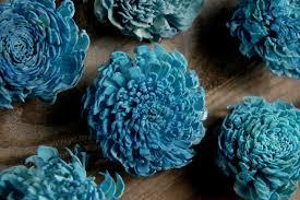 teal flowers sola flowers teal blue 12 flowers
