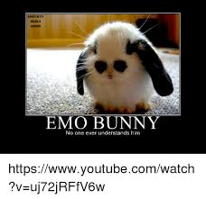 Angry Bunny Meme - 25 best memes about emo bunnies emo bunnies memes