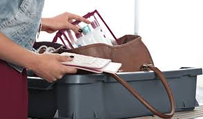 United Baggage Allowance Domestic Luggage Information Eurowings