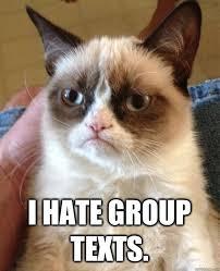Group Text Meme - i hate group texts cat meme cat planet cat planet