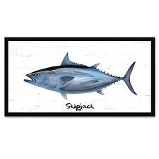 skipjack fish home decor wall art nautical beach fisherman gift