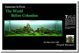 Aquascape Inspiration Aquascaping World Magazine World Before Columbus
