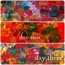 drunken gummy bears little bits of