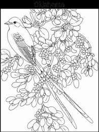 flower printable coloring sheets bird flower