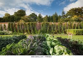 vegetable garden in walled gardens stock photos u0026 vegetable garden