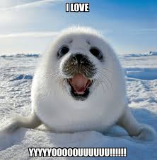 Cute I Love You Meme - 20 totally irresistible love you memes sayingimages com