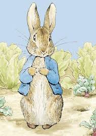 rabbit by beatrix potter rabbit beatrix potter the best rabbit of 2018