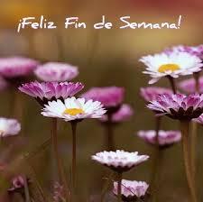 imagenes de feliz sabado vintage 151 best saludando images on pinterest dia de beautiful flowers