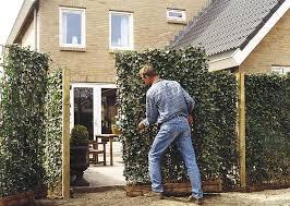 Trennwand Garten Glas Sichtschutz Fur Den Garten Selbst Bauen U2013 Godsriddle Info