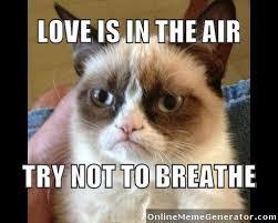 Meme Generator Grumpy Cat - grumpy cat is my soul mate