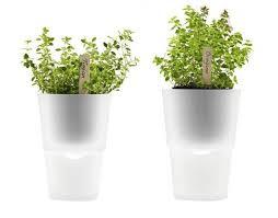 self watering indoor planters self watering pots 8 best indoor self watering planters for the