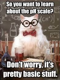 Ph Memes - so you want to learn about the ph scale cat meme cat planet cat