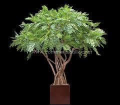 artificial tree artificial acacia tree commercial silk int l faux outdoor