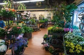 flowers nashville the best flower shops in nashville