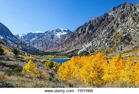 fall color lundy canyon sierra california stock
